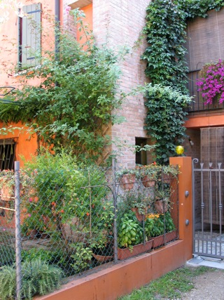 giardino da Guinness: pareti verticali