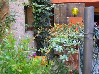 giardino da Guinness: vasi sulla rete di recinzione