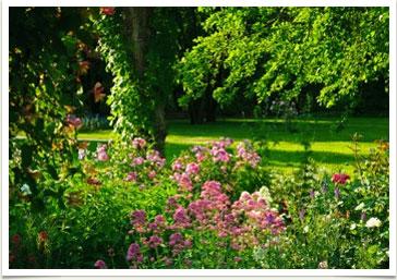 un giardino da fotografare