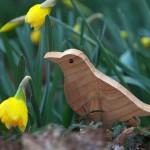Blackbird (merlo)