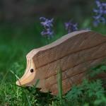Hedgehog (riccio)