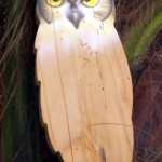 Owl (gufo)