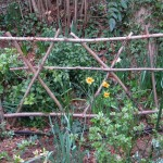 uno steccato