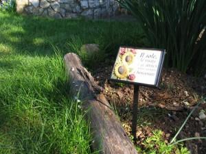 particolare dei cartellini segna piante