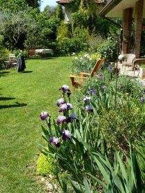 Altri iris