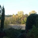 il giardino di Giuliana e Luigi - 3
