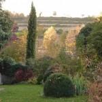 il giardino di Giuliana e Luigi - 4