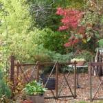 il giardino di Giuliana e Luigi - 5