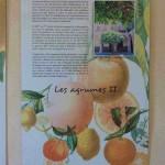 Serre-de-la-Madonne_034