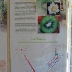 Serre-de-la-Madonne_042