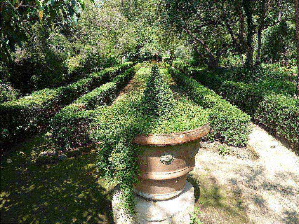 Giardini in provenza altre foto amici in giardino for Giardini immagini