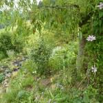 i-giardini-della-Slovenia_1-002