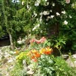 i-giardini-della-Slovenia_1-028