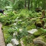i-giardini-della-Slovenia_1-034
