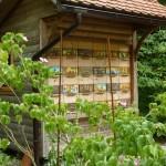 i-giardini-della-Slovenia_1-038
