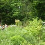 i-giardini-della-Slovenia_1-041
