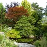 i-giardini-della-Slovenia_1-045