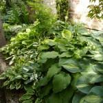 i-giardini-della-Slovenia_1-050