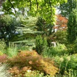 i-giardini-della-Slovenia_1-061