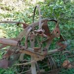 i-giardini-della-Slovenia_1-070