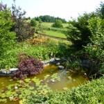 i-giardini-della-Slovenia_2-005