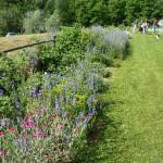 i-giardini-della-Slovenia_2-020