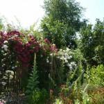 i-giardini-della-Slovenia_2-024