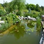 i-giardini-della-Slovenia_3-062