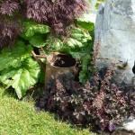 i-giardini-della-Slovenia_3-066