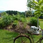 i-giardini-della-Slovenia_3-071