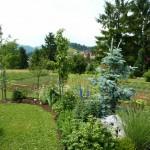 i-giardini-della-Slovenia_3-072