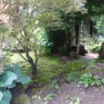 i-giardini-della-Slovenia_3-084