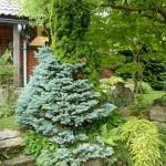i-giardini-della-Slovenia_3-088