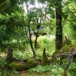 i-giardini-della-Slovenia_3-093