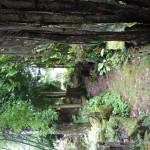 i-giardini-della-Slovenia_3-120