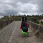 pellegrini_a_santiago-013