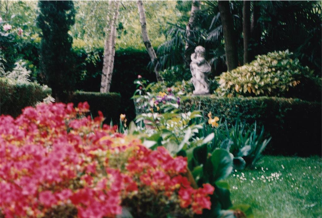 Salkım söğütlerin arasında bir mekan mio giardino