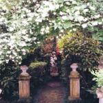 il mio giardino