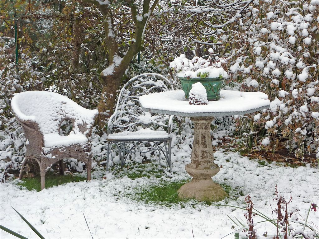 Il giardino d inverno di giulia e luigi amici in giardino - Giardini d inverno immagini ...