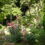 il giardino di Sandra e Roberto