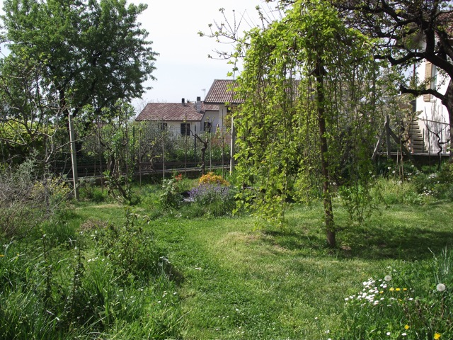 il giardino di Armando