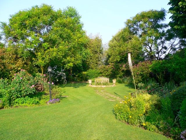 Slowear journal la storia in un giardino le piante antiche di