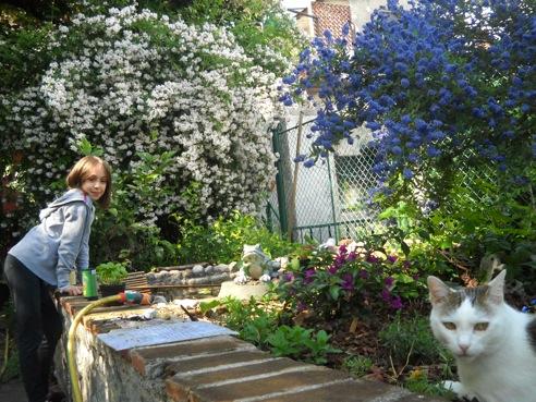 Cecilia garden