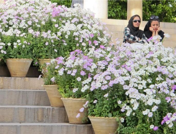 foto iran