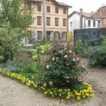 il giardino di Luisa