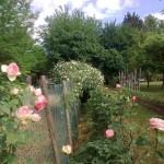 il giardino di Sergio