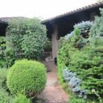 il giardino di Vito