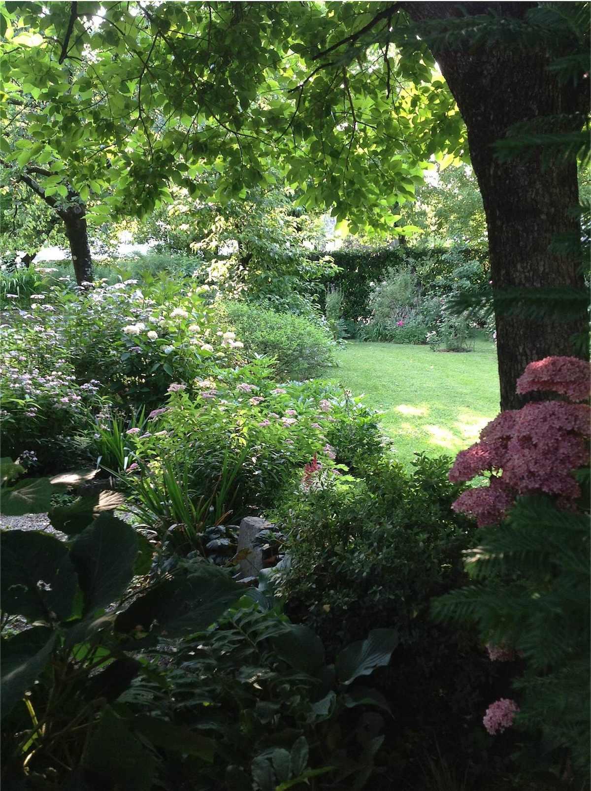 Il curriculum verde di paolo amici in giardino - Il giardino di ausonia ...