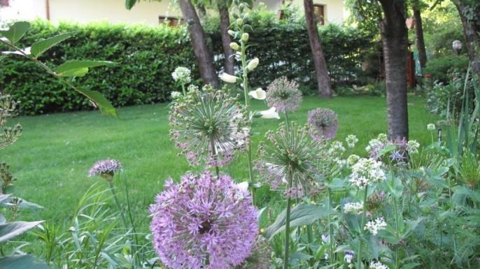 Il giardino di Bruna