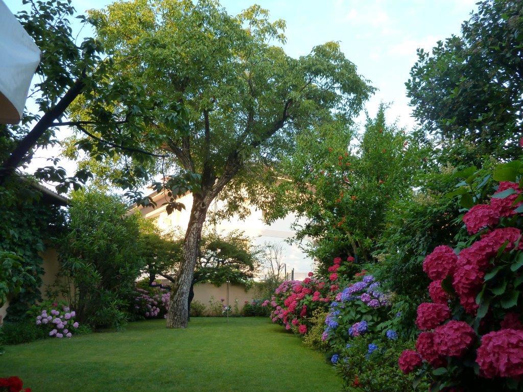 Il mio giardino nel delta del po